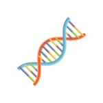 八大業務Icon-Title_基因檢測-150x150
